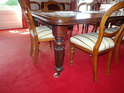 antique mahogany chairs