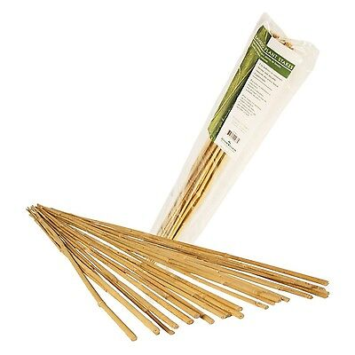 Hydrofarm Hgbb4 4-Feet Natural Bamboo Stake Pack of 25