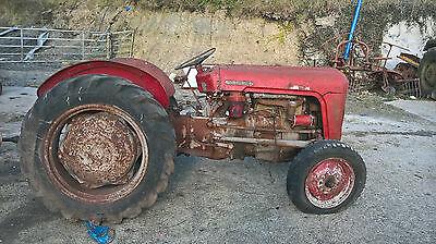 massey ferguson 35 4 cylender grey and gold spares or repairs