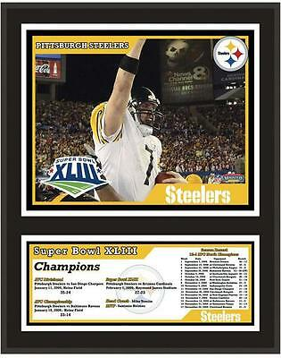 """Pittsburgh Steelers 12"""" x 15"""" Sublimated Plaque Super Bowl XLIII"""