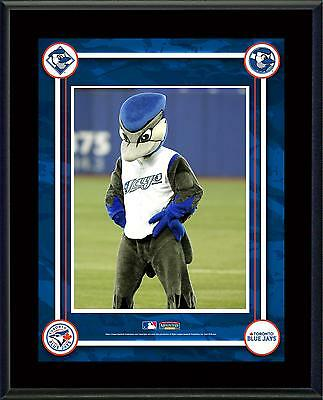 "Toronto Blue Jays Mascot Sublimated 10.5"" x 13"" Plaque"