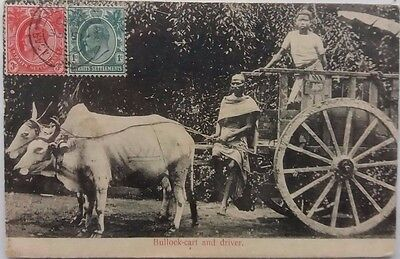 Singapore 1909 Picture Post Card With Tanjong Pagar Postmark To Shanghai China