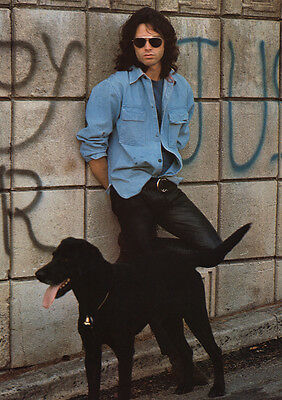 """The Doors Red Jim Morrison with Black Dog Poster 23.5"""" x 33""""  UK Import"""