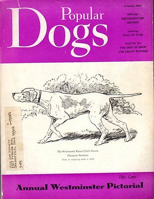 Popular Dogs Magazine February 1965, Westminster Pictorial, Tons of Pictures!