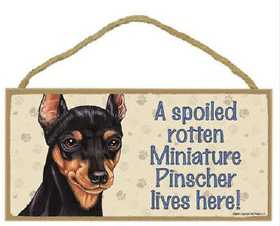 "Spoiled Rotten Miniature Pinscher Lives Here Sign Plaque Dog 10"" x 5"" pet gifts"