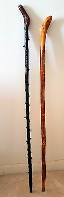 Antique Natural Irish Blackthorn Shillelagh & Irish Snake cane