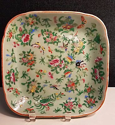 Antique 19c Qing Dynasty CHINESE Celadon FAMILLE ROSE Square Plate Bowl Insects