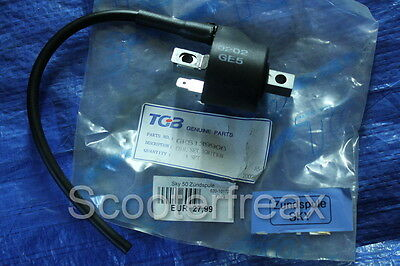Pegasus Sky 50 original Ignition Coil NEW GE5139906 GE05 Ignition HT Coil NEW