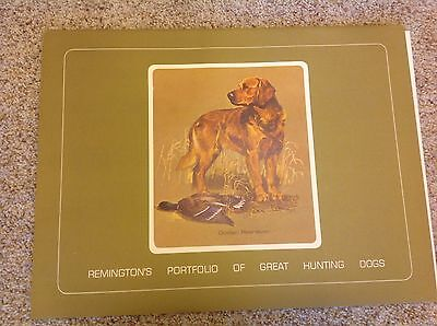 Remington Hunting Dogs Of America Print Set (12 Prints In The Set)