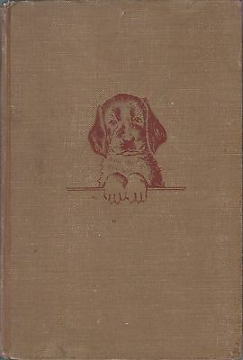 Dog Book ALWAYS READY Irish Setter Henry/Dennis-Signed HBFE 1947 FABULOUS RARE