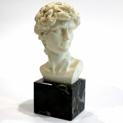 Michaelangelo's David Bust Sculpture Hand Carved On Marble Plinth Heavy