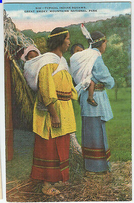 "vintage ""colorized"" native american indian Postcard, great smokey mtns beautiful"