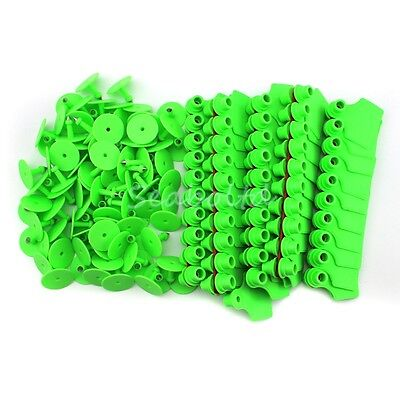 Green Blank Plastic Livestock Ear Tag Animal Tag for Goat Sheep Pig for 100Pcs