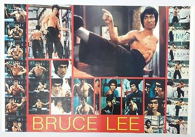 """BRUCE LEE KUNG FU FIGHTER CHINESE MOVIE THE POSTER 21""""x31"""" NEW SHEET WALL PM364"""