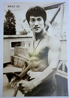 """BRUCE LEE KUNG FU FIGHTER CHINESE MOVIE THE POSTER 21""""x31"""" NEW SHEET WALL P-3498"""