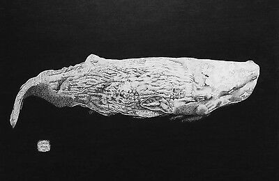 MADE ENTIRELY OF DOTS! Sperm Whale Art Original Signed pen&Ink Drawing A3