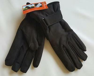 Riders Trend Luxury Nubuck Suede Leather Horse Riding Gloves size M Brown new