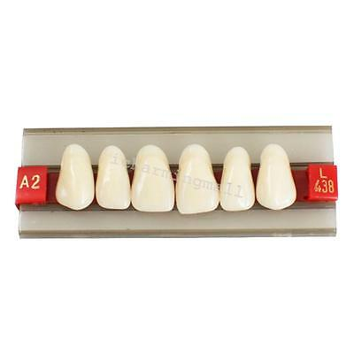 G438 A2 Upper Front Anterior Acrylic Resin Tooth Denture Dental Teeth Shade ukuk