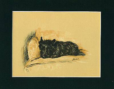 Dog Print 1937 Cairn Terrier on Chair by Lucy Dawson VINTAGE