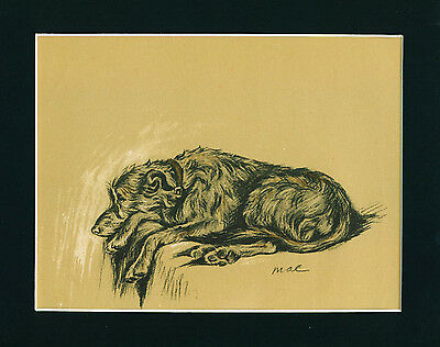 Dog Print 1937 Irish Wolfhound Dog by Lucy Dawson VINTAGE