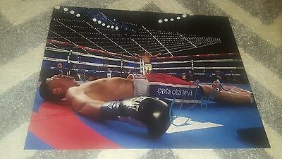 11x14 picture signed by Vasyl Lomachenko