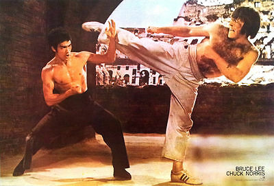 """BRUCE LEE AND CHUCK NORRIS KUNG FU FIGHTER MOVIE THEPOSTER 21""""x31"""" NEW WALL 2326"""
