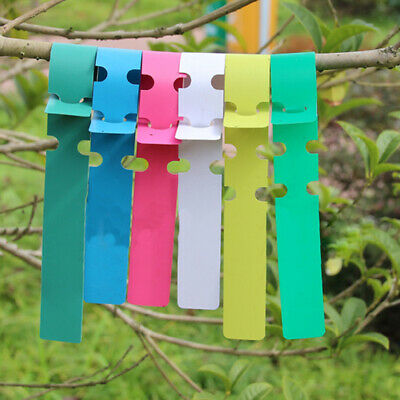 100pcs Plastic 2x20cm Gardening Plant Wrap Around Greenhouse Hanging Tags Marker