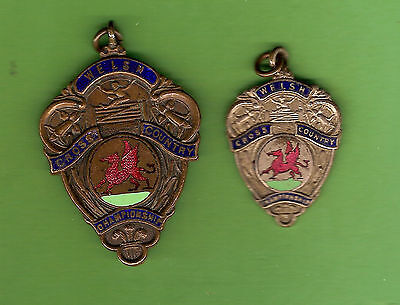 #d257.  Two Welsh  Cross  Country Championship  Prize Fobs