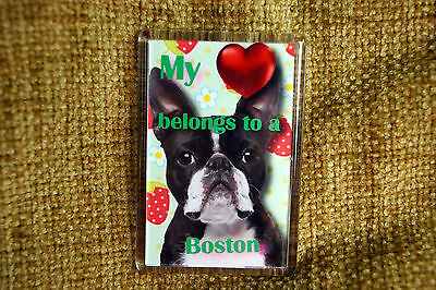 Boston Terrier Gift Dog Fridge Magnet 77x51mm Free UK Post Birthday Gift