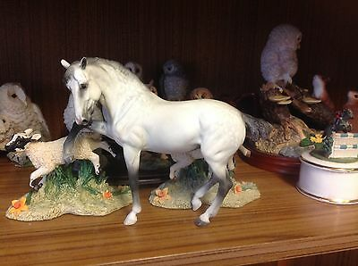 Breyer Resn Breeds of the world Andalusian horse model custom painted