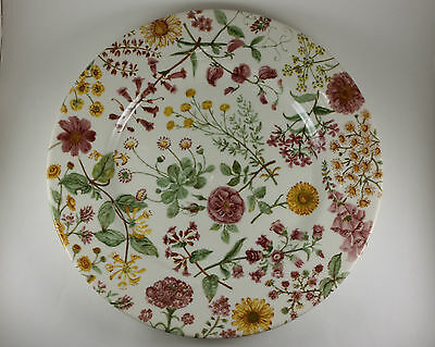 4 Royal Stafford HEDGEROW Wildflower Floral Dinner Plates England