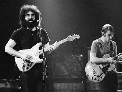Grateful Dead Jerry Garcia In Concert Rock Band 8X10 Photo Picture Photograph
