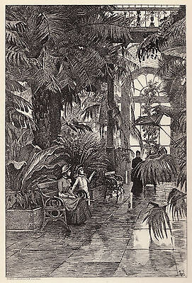 Kew Gardens, the Palm House, SUPERB 1880s antique engraving in 10 x 12 mount