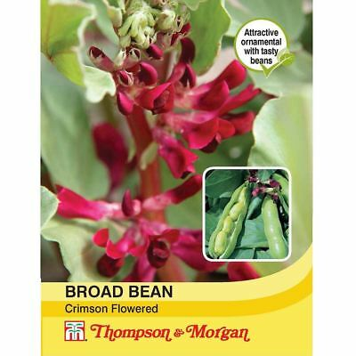 Thompson & Morgan - Vegetables - Broad Bean Crimson Flowered - 30 Seed
