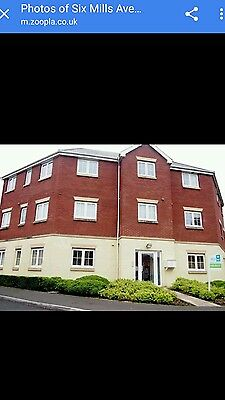 2 bedroom apartment for rent £560 pcm.