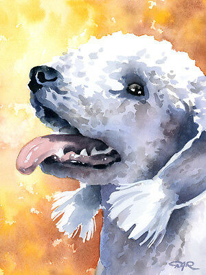 """Bedlington Terrier"" Watercolor Dog ART Print Signed by Artist DJR"