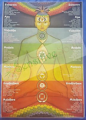 Chakra A4 information chart/poster