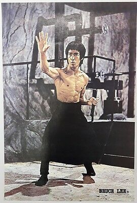 """BRUCE LEE KUNG FU FIGHTER CHINESE MOVIE EXERCISE THEPOSTER 21""""x31"""" NEW WALL 2515"""