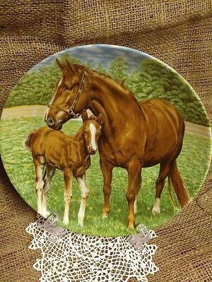 Kaiser Plate Made In West Germany Shows Mare Horse  With Foal