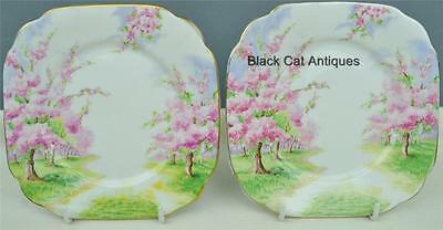 Delightful Vintage Royal Albert Blossom Time Bread & Butter Plate Lot Of two