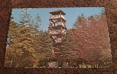 Vintage Postcard Unposted The Lookout Tower Hill Road South Kingstown RI