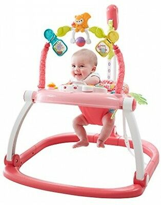 Fisher-Price Floral Confetti SpaceSaver Jumperoo
