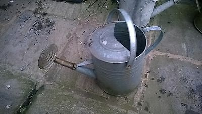 Vintage Style Galvanised Watering Can Planter Decoration