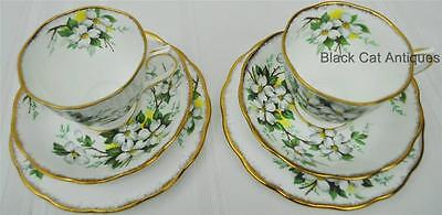 Lovely Royal Albert WHITE DOGWOOD 2 TRIOS Tea Cup Saucer Bread & Butter Trio