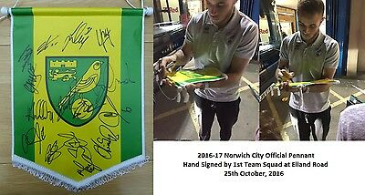 2016-17 Norwich City Official Pennant Signed by Squad inc. Ruddy & Brady (9503)
