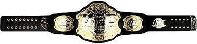 Conor McGregor Ultimate Fighting Championship Autographed Replica Item#5783178