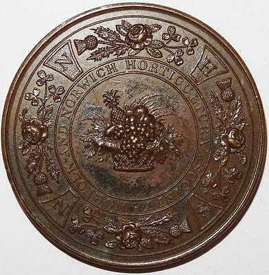 NORFOLK AND NORWICH HORTICULTURAL SOCIETY PRIZE MEDAL copper 45mm c1880?