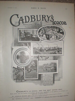 Cadbury's Cocoa views of Bourneville 1903 old advert