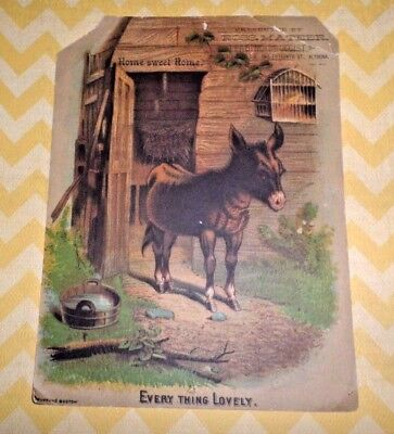 Donkey Victorian Trade Card J. Mateer, Leading Druggist, Altoona, PA 1800's