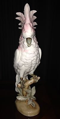 Beautiful Pink and White Royal Dux Porcelain Cockatoo Figurine